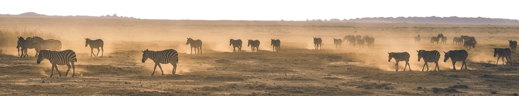 Ouganda paysages