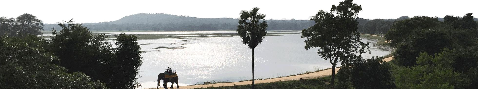 Visuel horizontal voyage Sri Lanka