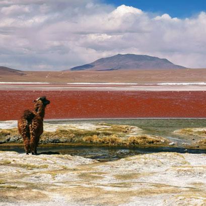 Perles rares Voyage Bolivie