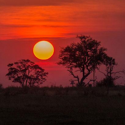 Perles rares Voyage Botswana