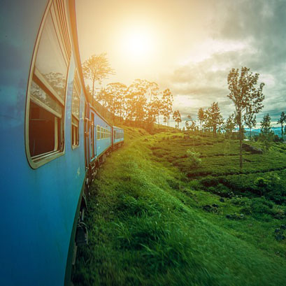 Perles rares Voyage Sri Lanka