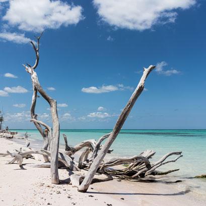 Perles rares Voyage Cuba